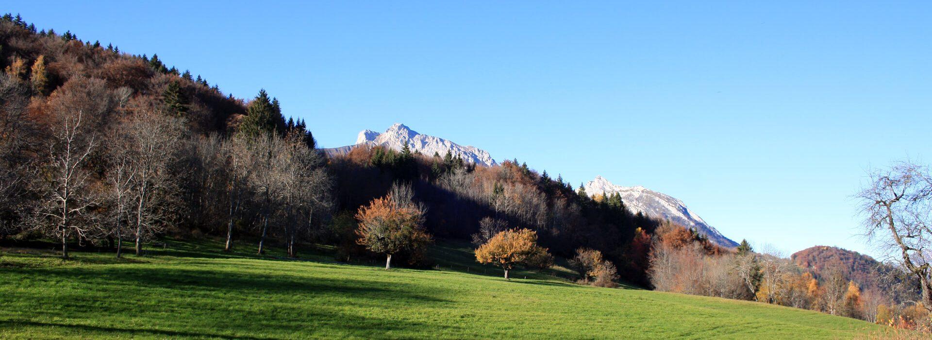 Roc de Nantbellet - En boucle depuis le parking du pylône - 1040 M