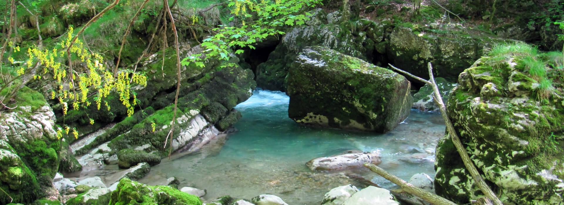 Les Gorges du Guiers Mort - Depuis le Pont Saint Bruno - 600 M