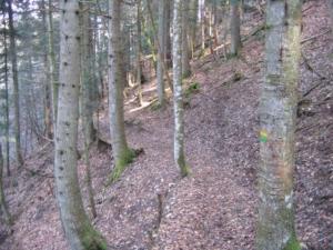 Bec de l'Aigle - Depuis les Gorges du Bruyant, en boucle - 1074 M