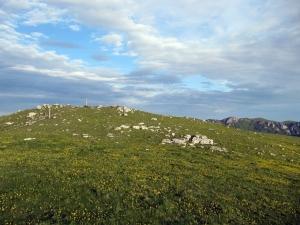 La Tête de la Dame - Plateau d'Ambel, depuis Gardiol - 1506 M