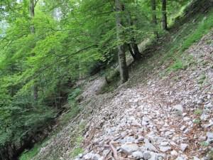 Le Col des Charmilles - En boucle, par le cul de lampe et le sentier des Agneaux - 1605 M