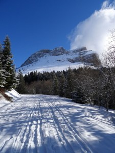 Col des Ayes en raquettes - Depuis la route du Col du Coq - 1538 M