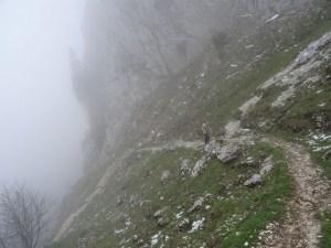 Habert de Bovinant - Montée directe par le Couvent, descente par la Ruchère - 1660 M