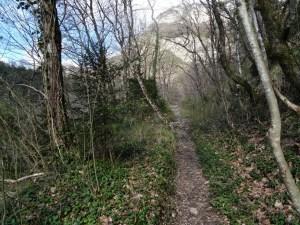 Rochers du Luisset - Par le sentier du Facteur - 980 M