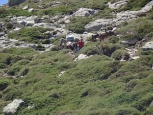 GR 20 - Etape 10 - Bocca di Verde - Usciolu