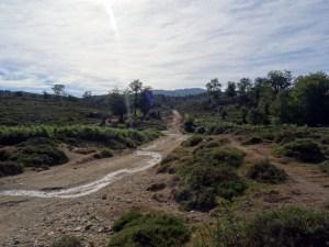 GR 20 - Etape 11 - Usciolu - Asinau