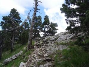 Chamechaude - Tour par le jardin, le sangle du jardin, et le canyon - 2082 M