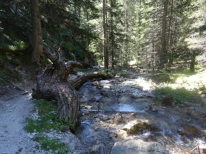 Grande Traversée des Alpes - Etape 23 - Lac Millefont - Lac de Trécolpas