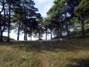 Grande Traversée des Alpes - Etape 26 - Sospel - Menton
