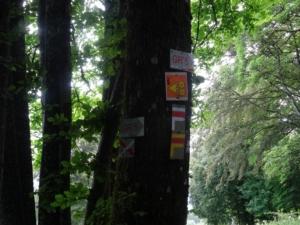 Grande Traversée du Jura – GTJ – Étape 2 – Pont-de-Roide - Girodé