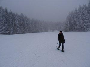 Tour des Riondettes - Depuis le Foyer de ski de la Ruchère - 1320 M