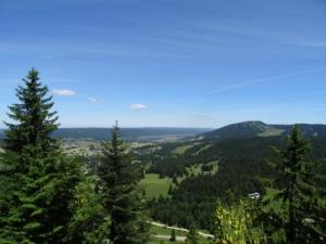 Grande Traversée du Jura – GTJ – Etape 6 - Mijoux - Foret du Risoux