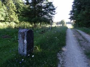 Grande Traversée du Jura - Étape 10 - Les Alliées - Villers-le-lac