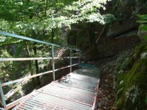 Grande Traversée du Jura - Étape 11 - Villers-le-Lac - Gorges du Doubs
