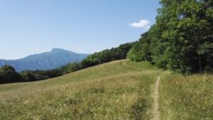 Mont Rachais - En boucle depuis le Col de Vence - 1046 M