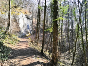 La Ferme Froussard - Depuis le Désert des Vouillants - 485 M