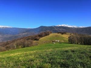 Sommet de Bellevue - Depuis Mont Rolland, en boucle - 733 M